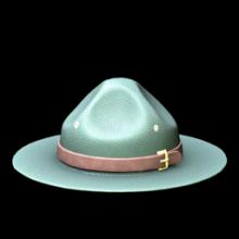 Campaign Hat
